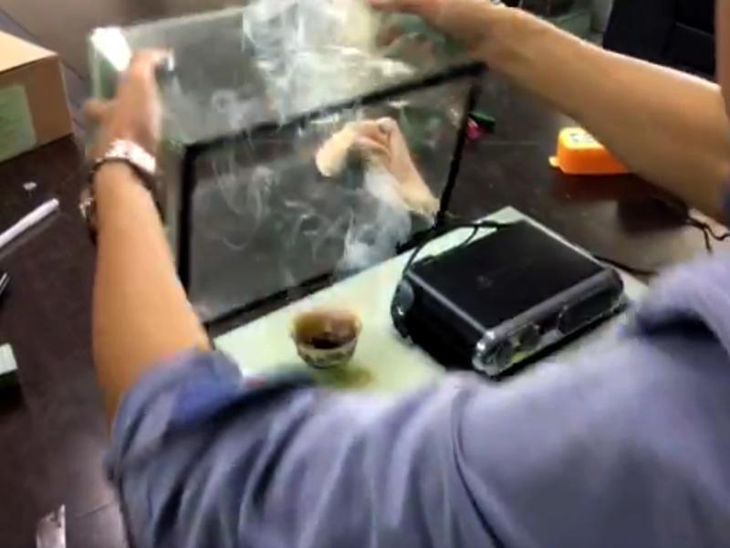 EDS-1007 vehicle test smoke purifier