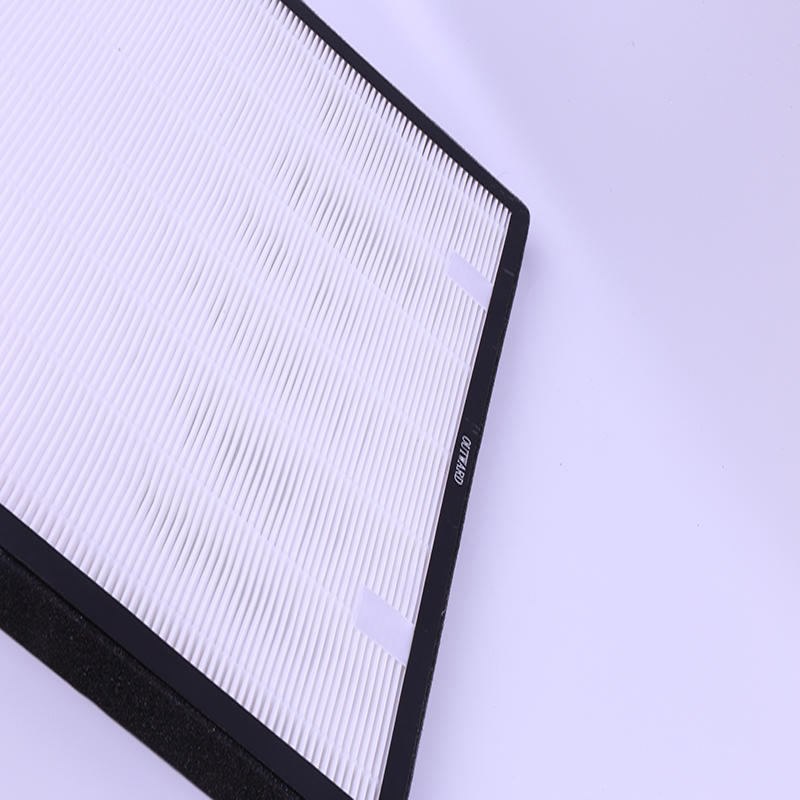 Activated carbon and HEPA filters need regular replacement